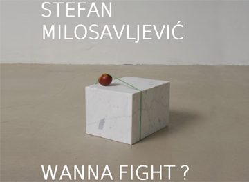 STEFAN MILOSAVLJEVIC - WANNA FIGHT?