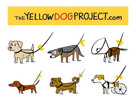 Porzione locandina The Yellow Dog Project