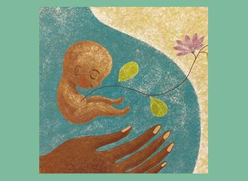 Immagine feto con piantine, illustrato da Tommaso D'Incalci