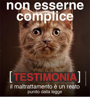 Volantino Enpa - Campagna contro l'abbandono e maltrattamento animali