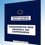 Immagine passaporto animali da compagnia