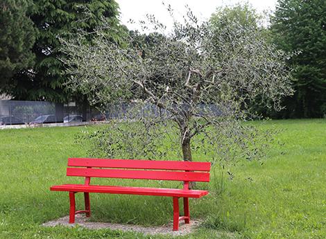 Lissone - Gallery - Una nuova panchina rossa al Liceo Parini