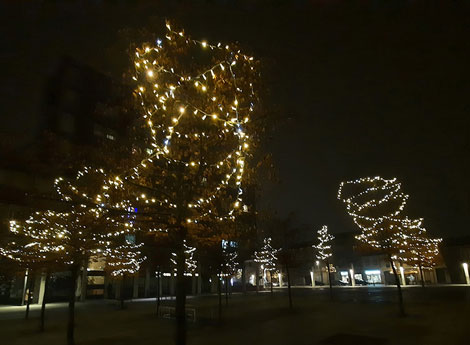 Immagine Piazza Libertà illuminata