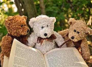 Immagine orsi che leggono