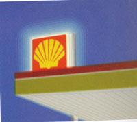 Shell, 2002 - olio su tela, cm. 100x80
