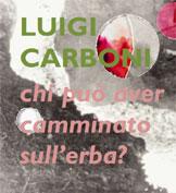 icona copertina mostra Luigi Carboni