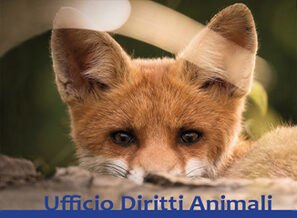particolare locandina  Ufficio Diritti Animali